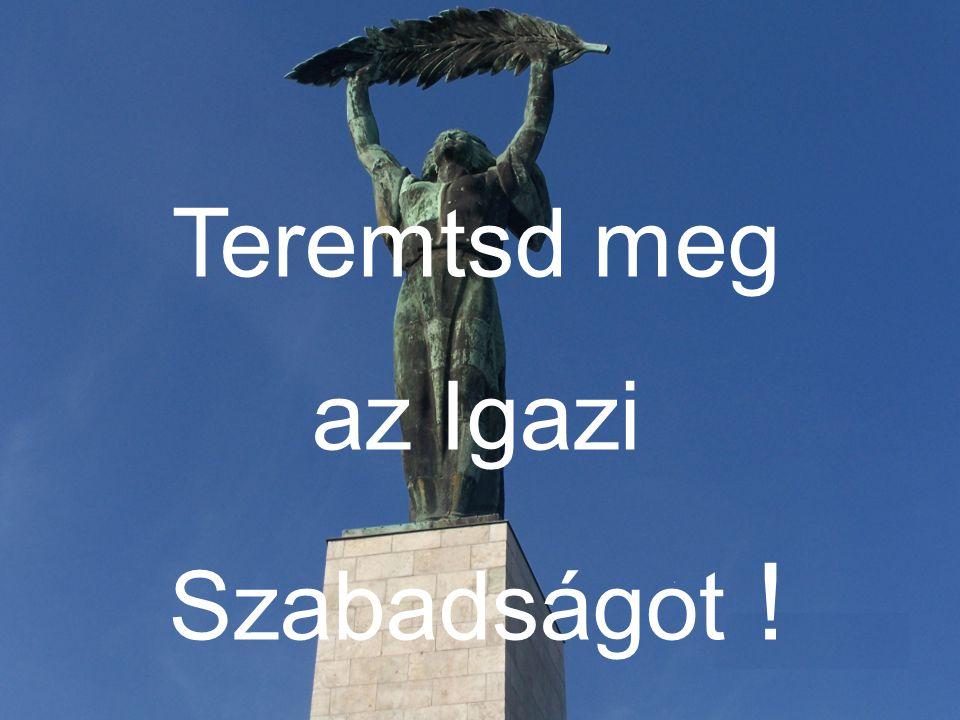 Teremtsd meg az Igazi Szabadságot !