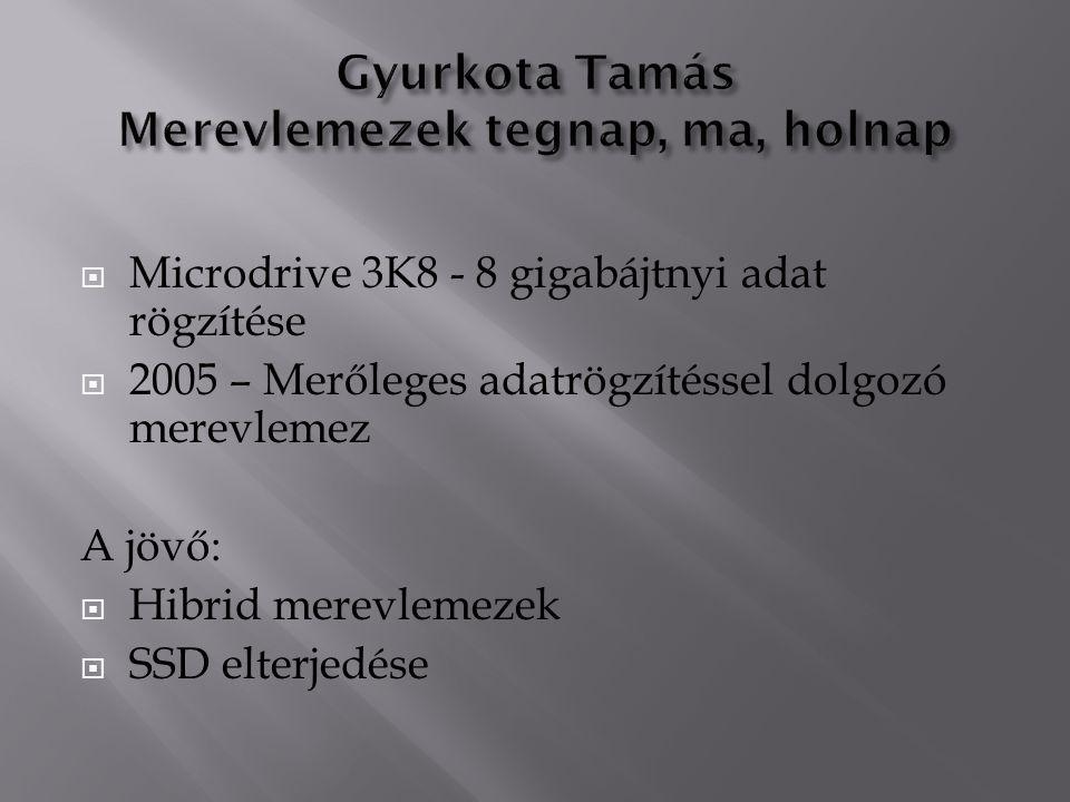  Microdrive 3K8 - 8 gigabájtnyi adat rögzítése  2005 – Merőleges adatrögzítéssel dolgozó merevlemez A jövő:  Hibrid merevlemezek  SSD elterjedése