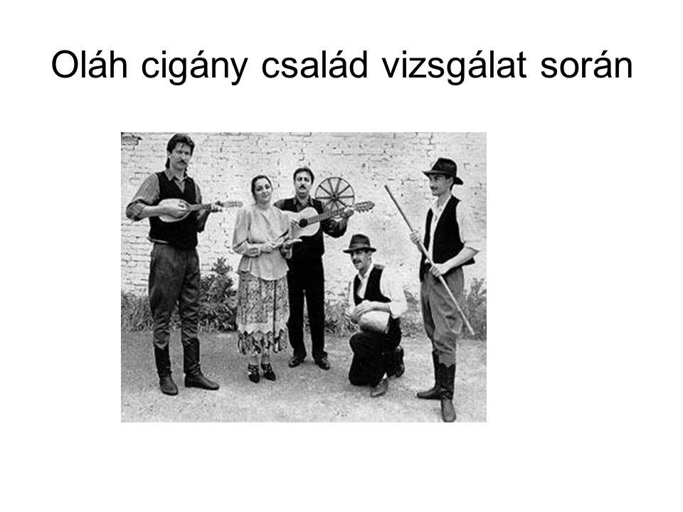 Alapszituáció Négy tagú oláh cigány család érkezik a hivatalba.