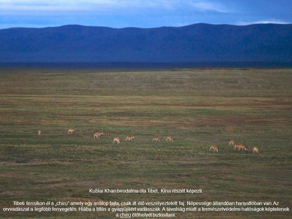 """Kublai Khan birodalma óta Tibet, Kína részét képezti. Tibeti fensíkon él a """"chiru"""" amely egy antilop fajta, csak itt élő veszélyeztetett faj. Népesség"""
