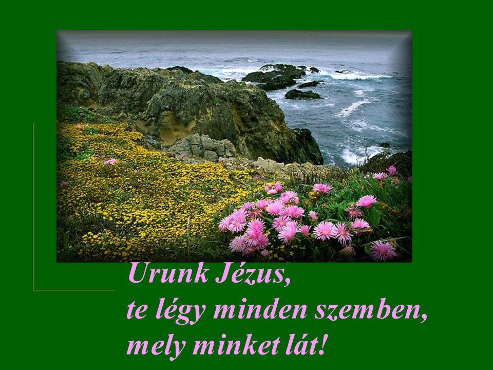 Urunk Jézus, te légy azok ajkán, akik róluk beszélnek!