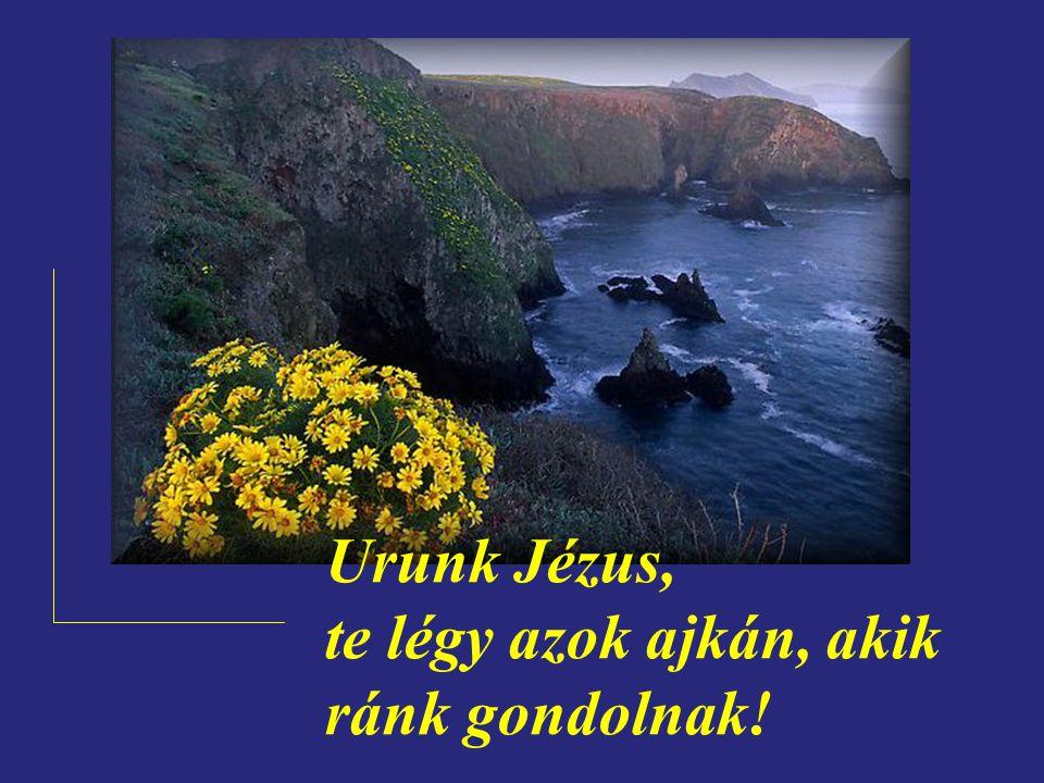 Urunk Jézus, te légy azok szívében, akik ránk gondolnak!