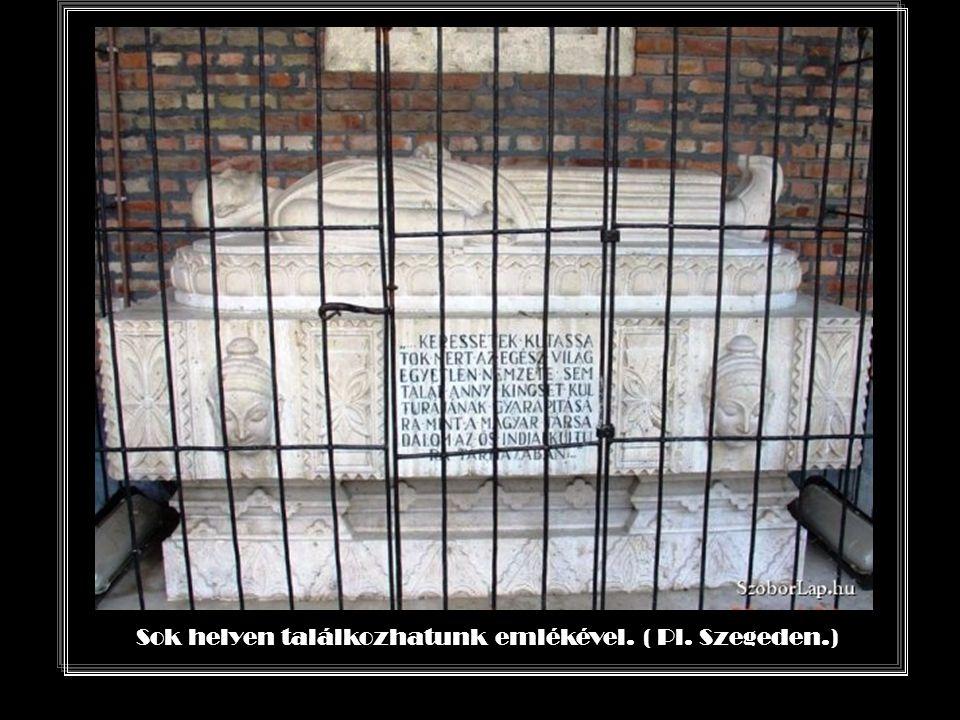 Széchenyi István íróasztalára készíttette e képet, hogy csodálatát e módon is kifejezhesse.