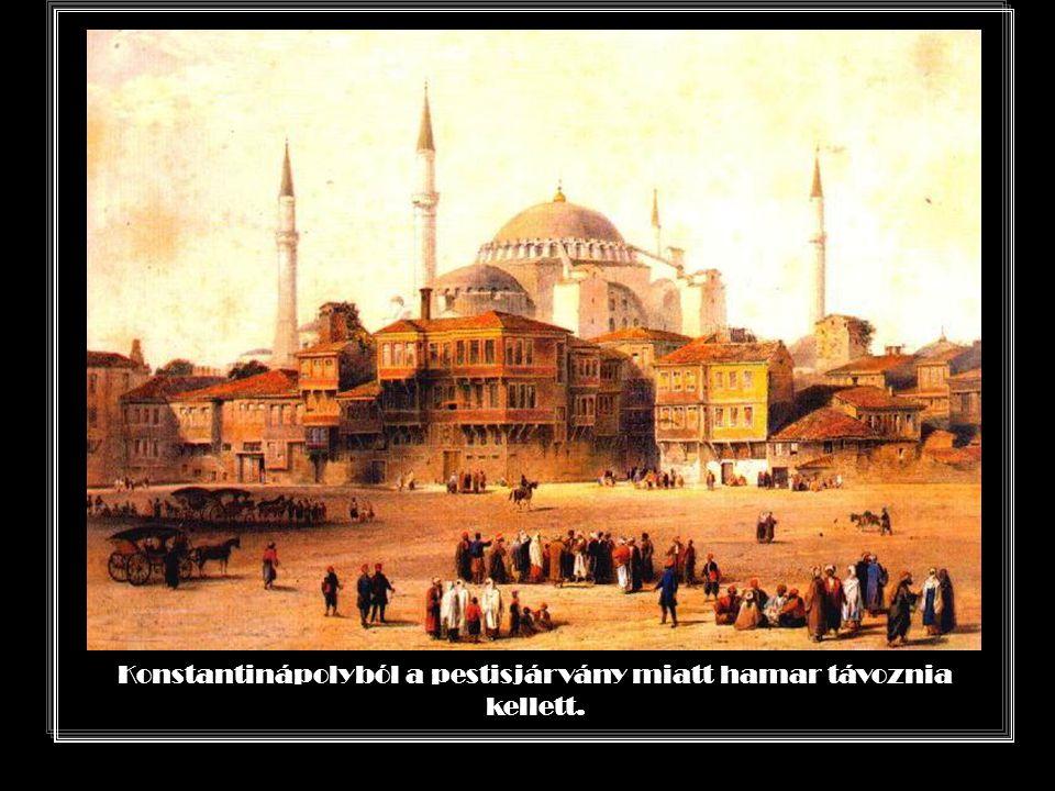 Konstantinápolyból a pestisjárvány miatt hamar távoznia kellett.