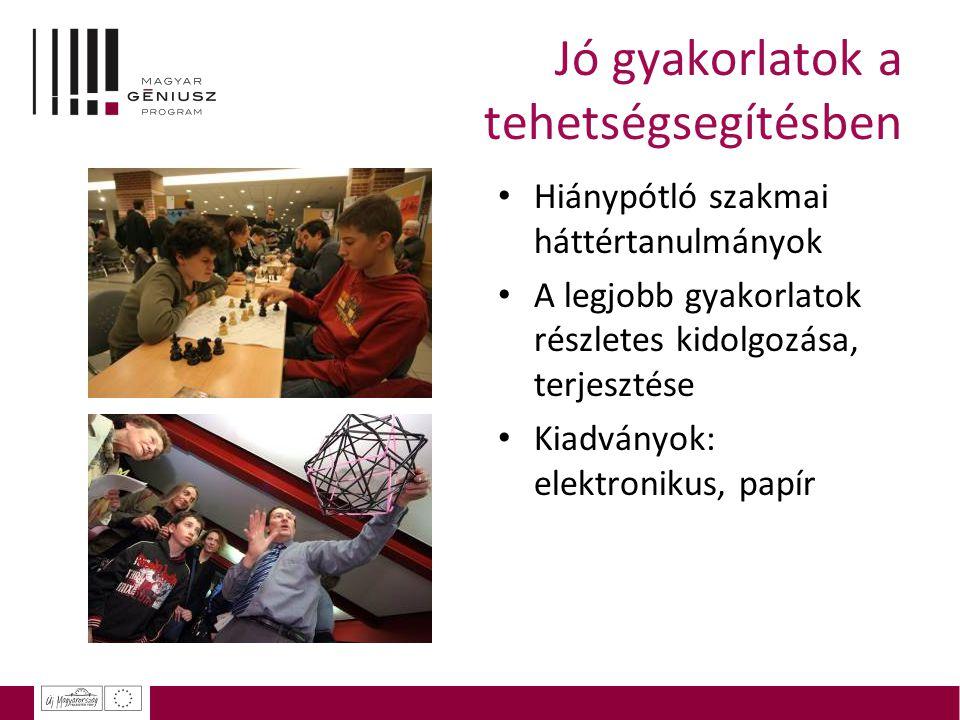 Jó gyakorlatok a tehetségsegítésben Hiánypótló szakmai háttértanulmányok A legjobb gyakorlatok részletes kidolgozása, terjesztése Kiadványok: elektron