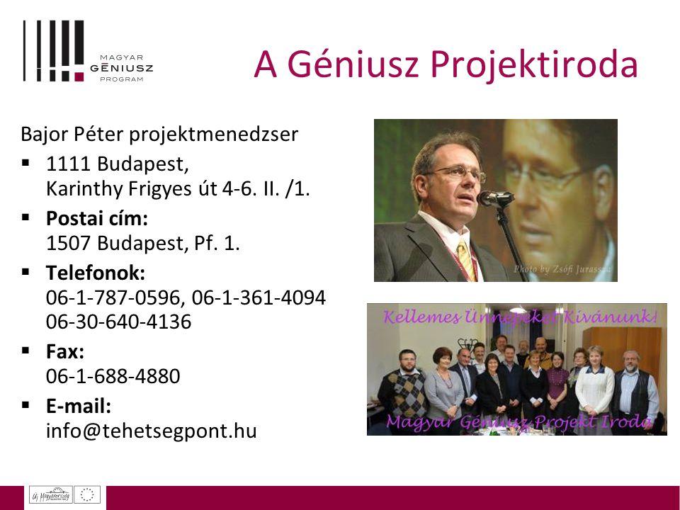A Géniusz Projektiroda Bajor Péter projektmenedzser  1111 Budapest, Karinthy Frigyes út 4-6. II. /1.  Postai cím: 1507 Budapest, Pf. 1.  Telefonok: