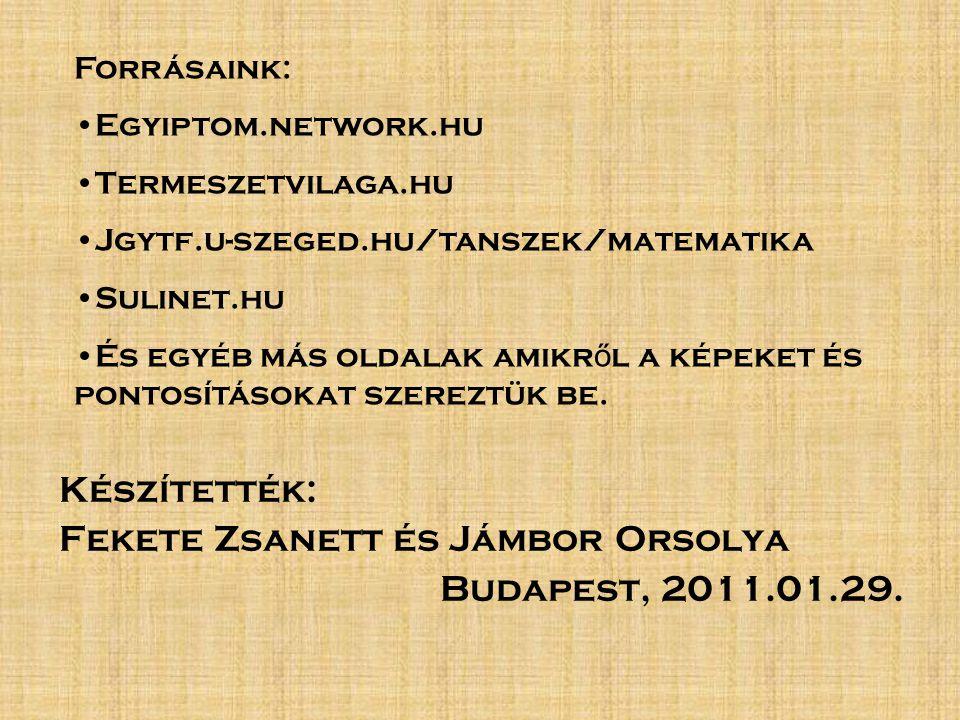 Készítették: Fekete Zsanett és Jámbor Orsolya Budapest, 2011.01.29.