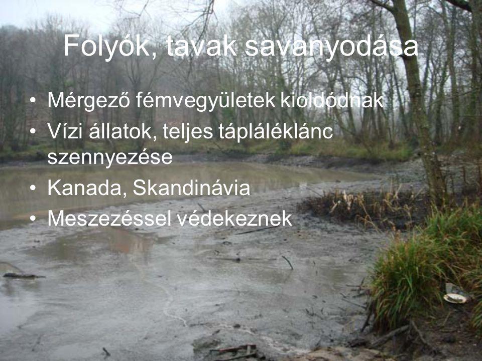 Folyók, tavak savanyodása Mérgező fémvegyületek kioldódnak Vízi állatok, teljes tápláléklánc szennyezése Kanada, Skandinávia Meszezéssel védekeznek