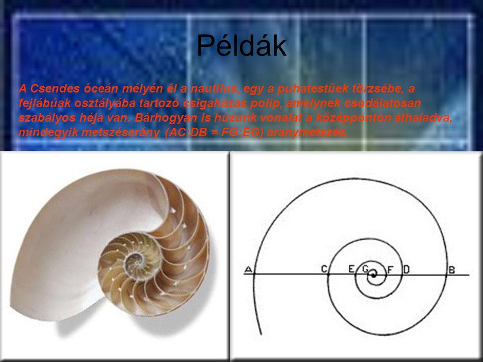 Példák A Csendes óceán mélyén él a nautilus, egy a puhatestűek törzsébe, a fejlábúak osztályába tartozó csigaházas polip, amelynek csodálatosan szabál