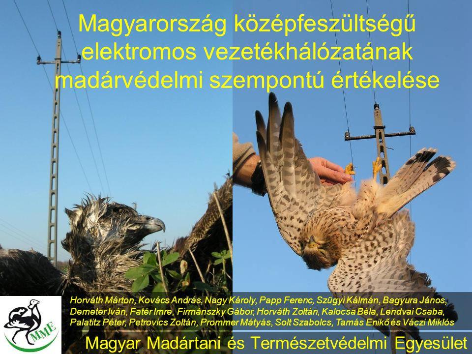 Magyar Madártani és Természetvédelmi Egyesület Magyarország középfeszültségű elektromos vezetékhálózatának madárvédelmi szempontú értékelése Horváth M
