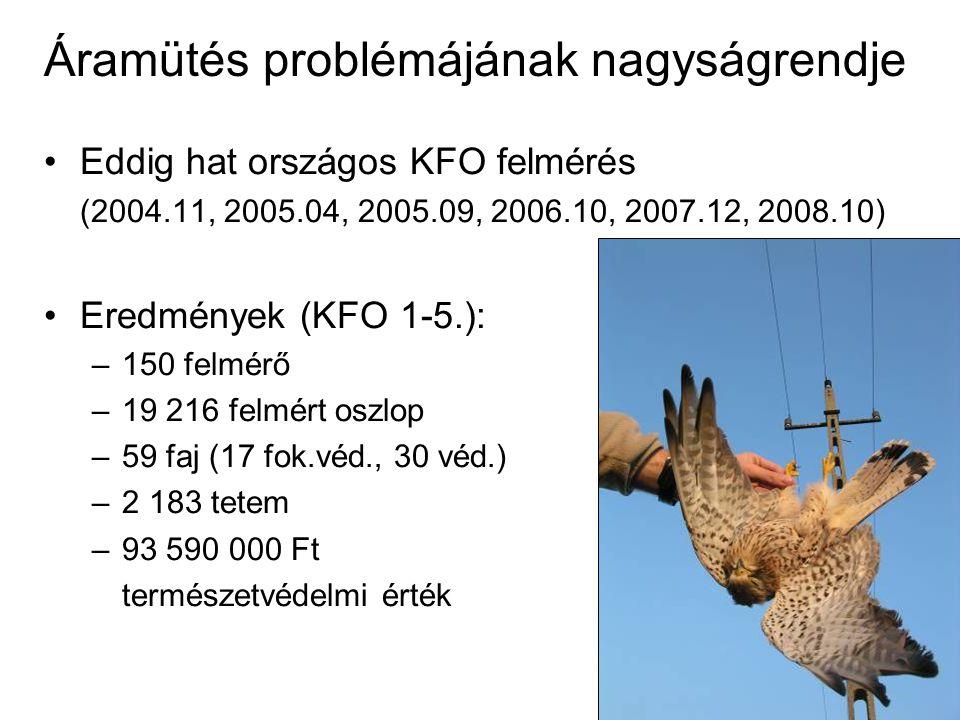 Áramütés problémájának nagyságrendje Eddig hat országos KFO felmérés (2004.11, 2005.04, 2005.09, 2006.10, 2007.12, 2008.10) Eredmények (KFO 1-5.): –150 felmérő –19 216 felmért oszlop –59 faj (17 fok.véd., 30 véd.) –2 183 tetem –93 590 000 Ft természetvédelmi érték