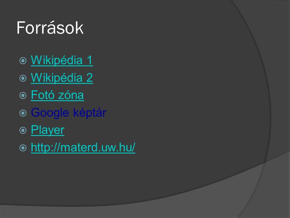 Források  Wikipédia 1 Wikipédia 1  Wikipédia 2 Wikipédia 2  Fotó zóna Fotó zóna  Google képtár  Player Player  http://materd.uw.hu/ http://mater