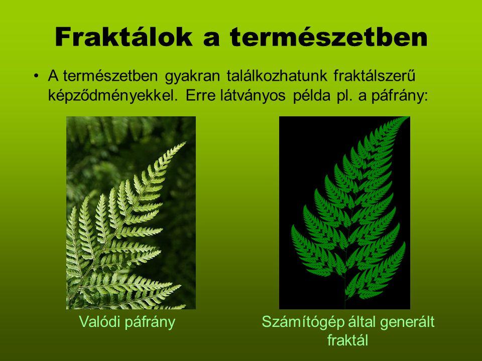 Fraktálok a természetben A természetben gyakran találkozhatunk fraktálszerű képződményekkel. Erre látványos példa pl. a páfrány: Valódi páfránySzámító