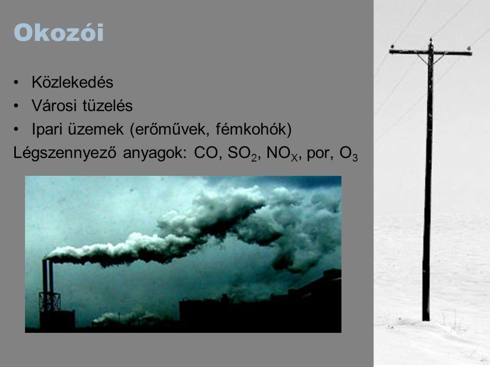 Okozói Közlekedés Városi tüzelés Ipari üzemek (erőművek, fémkohók) Légszennyező anyagok: CO, SO 2, NO X, por, O 3