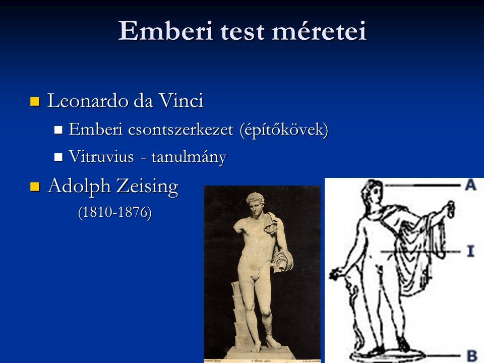 Emberi test méretei Leonardo da Vinci Leonardo da Vinci Emberi csontszerkezet (építőkövek) Emberi csontszerkezet (építőkövek) Vitruvius - tanulmány Vitruvius - tanulmány Adolph Zeising Adolph Zeising(1810-1876)
