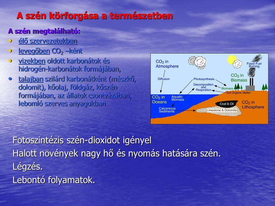 A szén körforgása a természetben A szén megtalálható: élő szervezetekben élő szervezetekben levegőben CO 2 –ként levegőben CO 2 –ként vizekben oldott