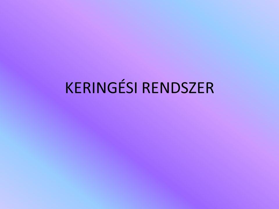 KERINGÉSI RENDSZER