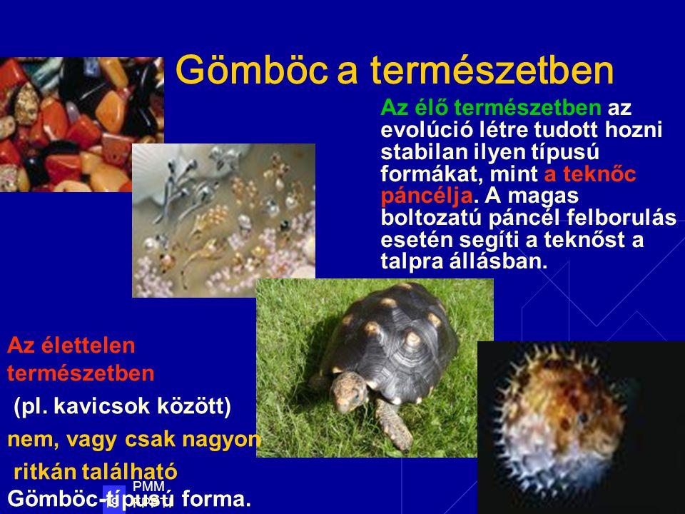 PMM FPPTI 19 Gömböc a természetben Az élő természetben az evolúció létre tudott hozni stabilan ilyen típusú formákat, mint a teknőc páncélja.