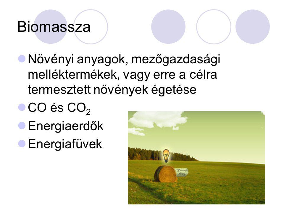 Biomassza Növényi anyagok, mezőgazdasági melléktermékek, vagy erre a célra termesztett nővények égetése CO és CO 2 Energiaerdők Energiafüvek