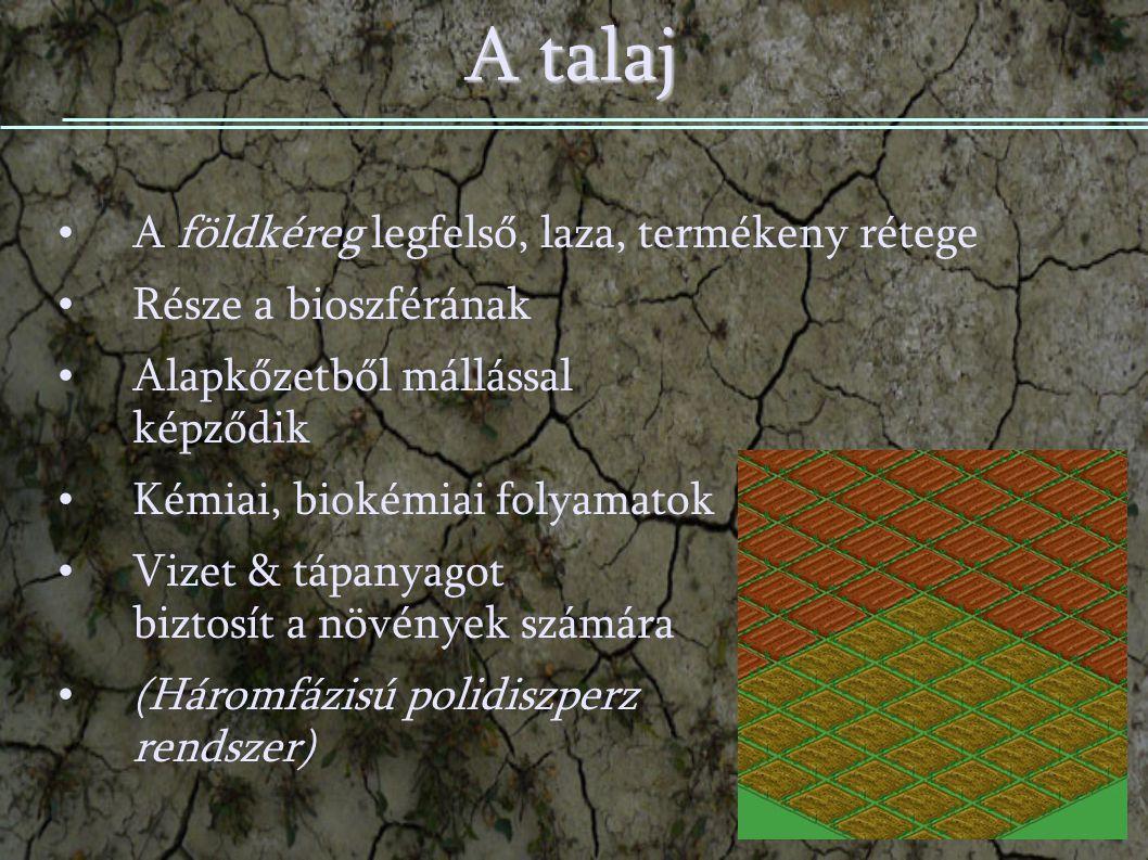 A talaj A földkéreg legfelső, laza, termékeny rétege Része a bioszférának Alapkőzetből mállással képződik Kémiai, biokémiai folyamatok Vizet & tápanyagot biztosít a növények számára (Háromfázisú polidiszperz rendszer)