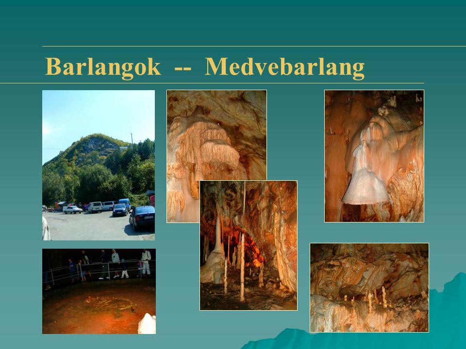 Barlangok -- Medvebarlang