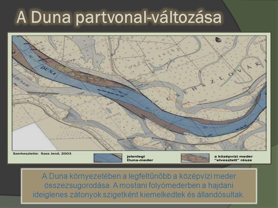 A Duna környezetében a legfeltűnőbb a középvízi meder összezsugorodása. A mostani folyómederben a hajdani ideiglenes zátonyok szigetként kiemelkedtek