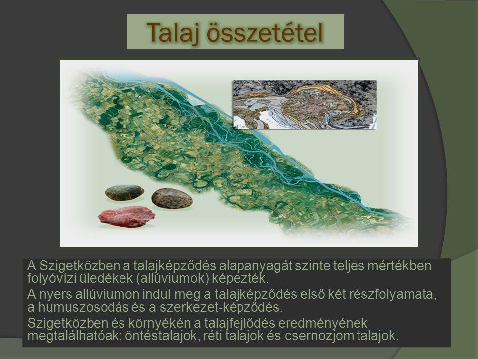 A Szigetközben a talajképződés alapanyagát szinte teljes mértékben folyóvízi üledékek (allúviumok) képezték. A nyers allúviumon indul meg a talajképző