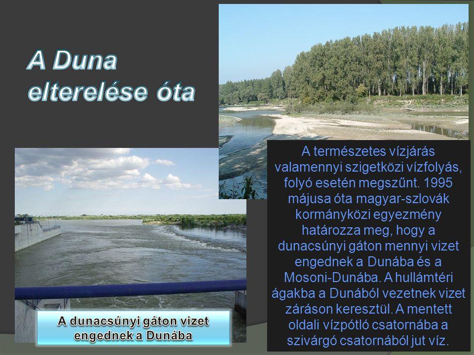 A természetes vízjárás valamennyi szigetközi vízfolyás, folyó esetén megszűnt. 1995 májusa óta magyar-szlovák kormányközi egyezmény határozza meg, hog