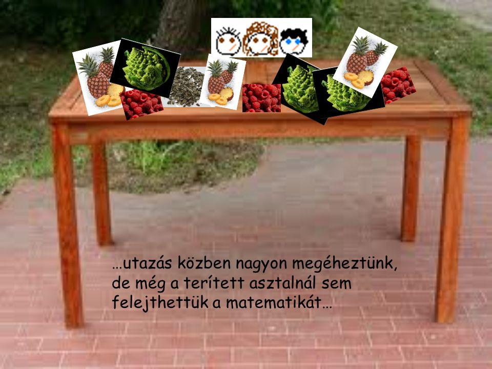 …utazás közben nagyon megéheztünk, de még a terített asztalnál sem felejthettük a matematikát…