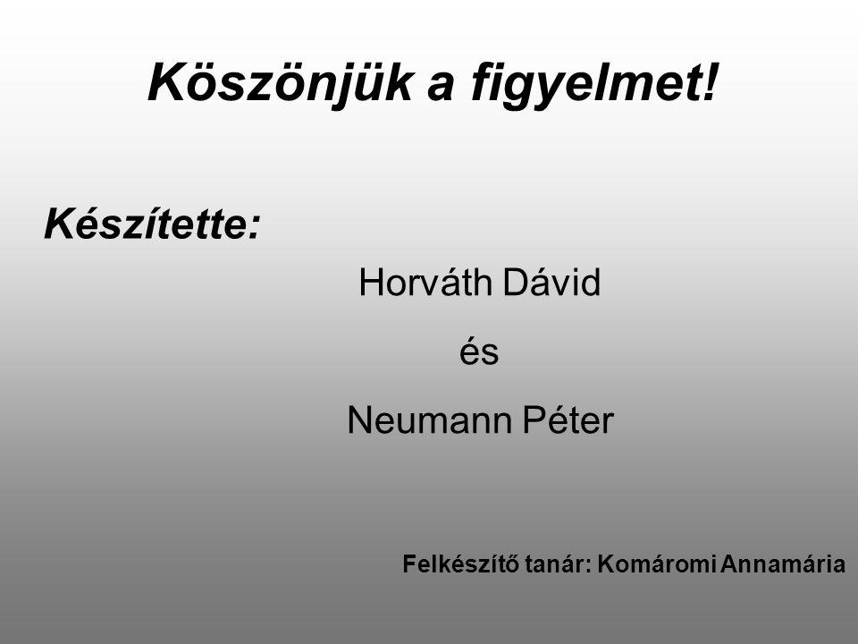Készítette: Köszönjük a figyelmet! Horváth Dávid és Neumann Péter Felkészítő tanár: Komáromi Annamária