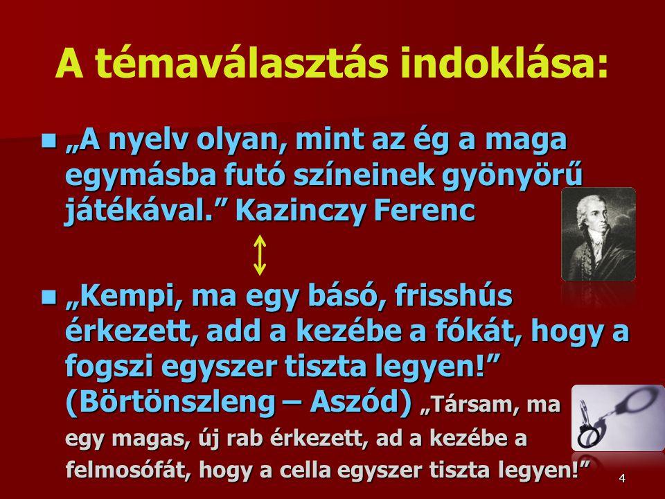 """A témaválasztás indoklása: """"A nyelv olyan, mint az ég a maga egymásba futó színeinek gyönyörű játékával. Kazinczy Ferenc """"A nyelv olyan, mint az ég a maga egymásba futó színeinek gyönyörű játékával. Kazinczy Ferenc """"Kempi, ma egy básó, frisshús érkezett, add a kezébe a fókát, hogy a fogszi egyszer tiszta legyen! (Börtönszleng – Aszód) """"Társam, ma """"Kempi, ma egy básó, frisshús érkezett, add a kezébe a fókát, hogy a fogszi egyszer tiszta legyen! (Börtönszleng – Aszód) """"Társam, ma egy magas, új rab érkezett, ad a kezébe a felmosófát, hogy a cella egyszer tiszta legyen! felmosófát, hogy a cella egyszer tiszta legyen! 4"""