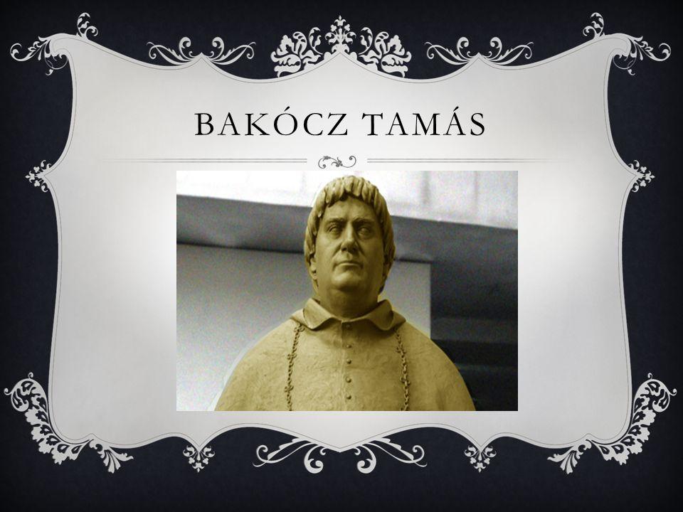 BAKÓCZ TAMÁS
