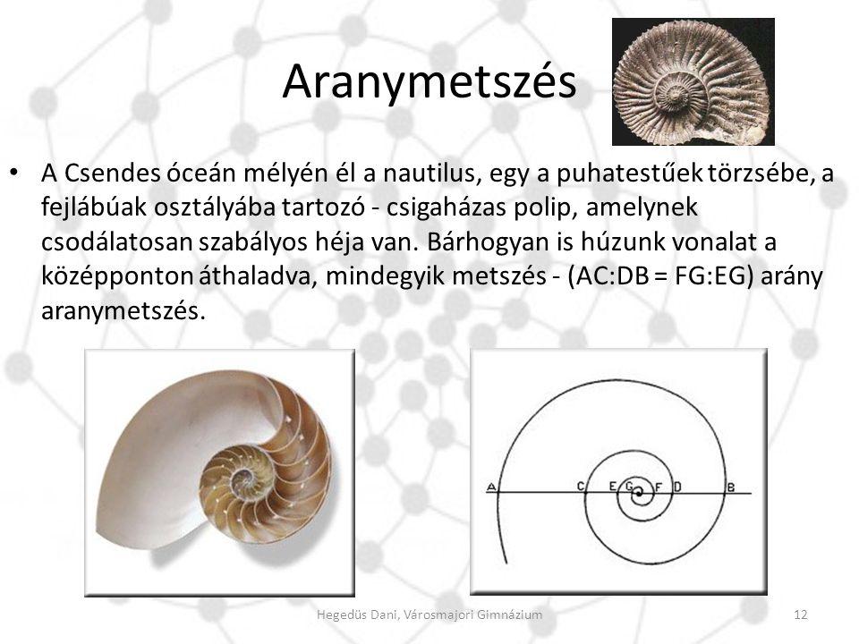Aranymetszés A Csendes óceán mélyén él a nautilus, egy a puhatestűek törzsébe, a fejlábúak osztályába tartozó - csigaházas polip, amelynek csodálatosa