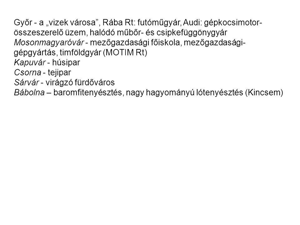 """Győr - a """"vizek városa"""", Rába Rt: futóműgyár, Audi: gépkocsimotor- összeszerelő üzem, halódó műbőr- és csipkefüggönygyár Mosonmagyaróvár - mezőgazdasá"""
