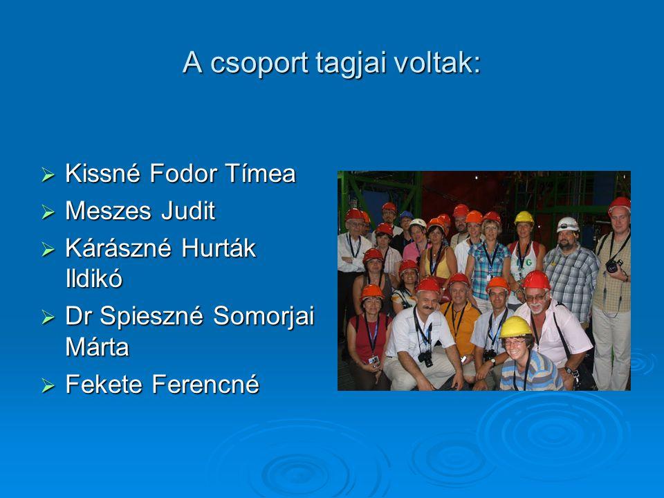 A csoport tagjai voltak:  Kissné Fodor Tímea  Meszes Judit  Kárászné Hurták Ildikó  Dr Spieszné Somorjai Márta  Fekete Ferencné