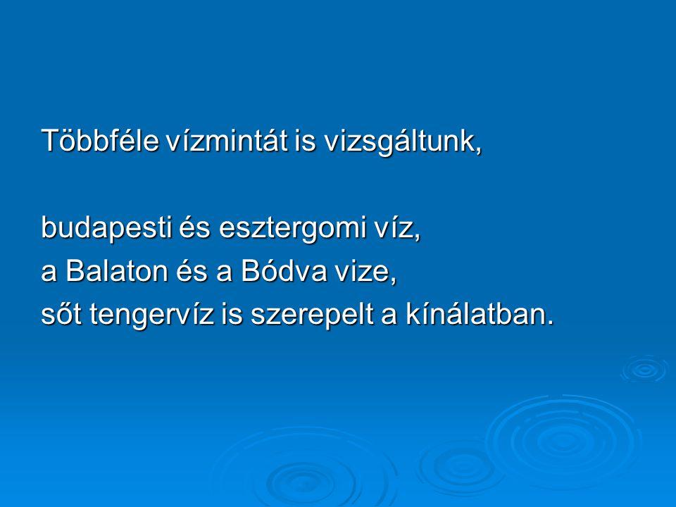 Többféle vízmintát is vizsgáltunk, budapesti és esztergomi víz, a Balaton és a Bódva vize, sőt tengervíz is szerepelt a kínálatban.