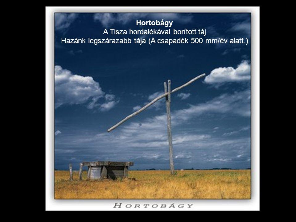 Hortobágy A Tisza hordalékával borított táj Hazánk legszárazabb tája (A csapadék 500 mm/év alatt.)