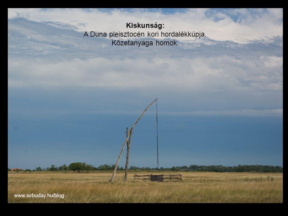 Kiskunság: A Duna pleisztocén kori hordalékkúpja. Kőzetanyaga homok.