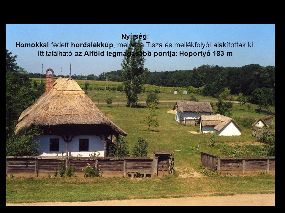 Nyírség: Homokkal fedett hordalékkúp, melyet a Tisza és mellékfolyói alakítottak ki. Itt található az Alföld legmagasabb pontja: Hoportyó 183 m