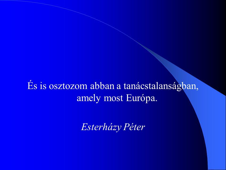 És is osztozom abban a tanácstalanságban, amely most Európa. Esterházy Péter
