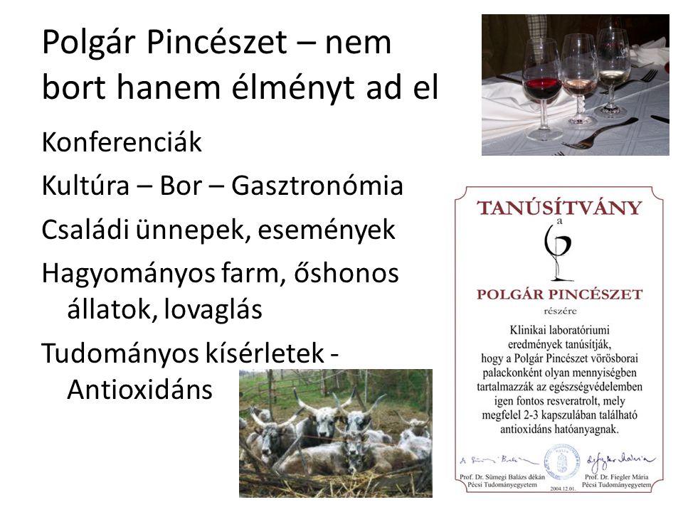 Polgár Pincészet – nem bort hanem élményt ad el Konferenciák Kultúra – Bor – Gasztronómia Családi ünnepek, események Hagyományos farm, őshonos állatok