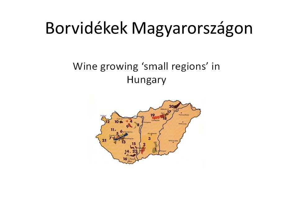 Borvidékek Magyarországon
