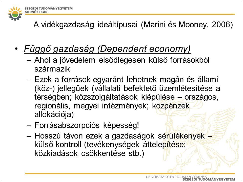 Függő gazdaság (Dependent economy) –Ahol a jövedelem elsődlegesen külső forrásokból származik –Ezek a források egyaránt lehetnek magán és állami (köz-