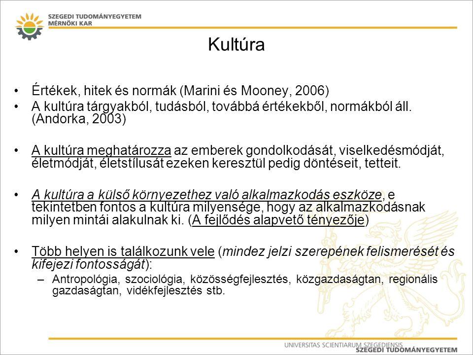 Kultúra Értékek, hitek és normák (Marini és Mooney, 2006) A kultúra tárgyakból, tudásból, továbbá értékekből, normákból áll. (Andorka, 2003) A kultúra