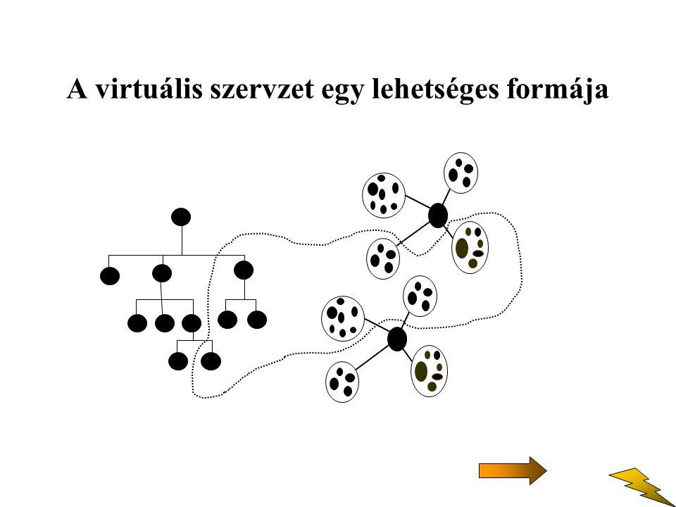 A virtuális szervzet egy lehetséges formája