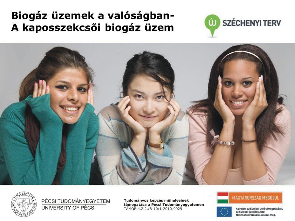 Danka Sándor Pécsi Tudományegyetem MRTT X. Vándorgyűlés A beruházás összetevői: