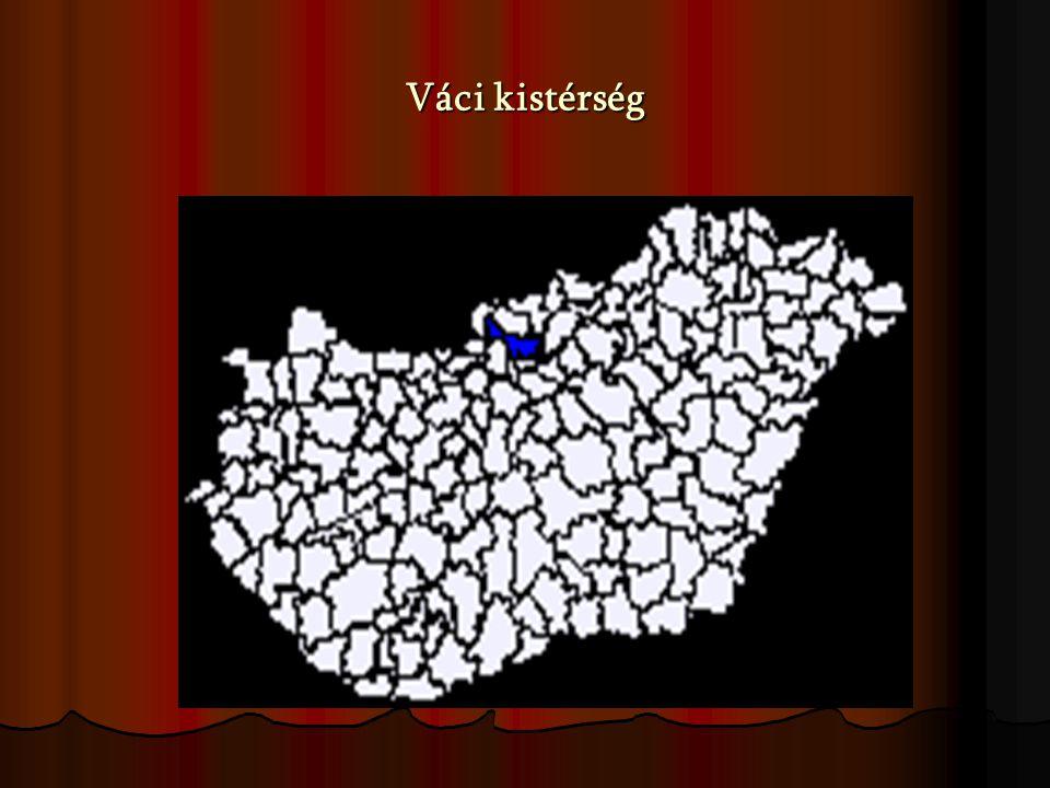 A vizsgálat jellemzői A vizsgálati minta jellemzője: az álláskeresők munkaerő mobilitásának vizsgálata a Közép- magyarországi Regionális Munkaügyi Központ Váci Kirendeltségén, 160 fő A vizsgálati minta jellemzője: az álláskeresők munkaerő mobilitásának vizsgálata a Közép- magyarországi Regionális Munkaügyi Központ Váci Kirendeltségén, 160 fő A vizsgálati módszer: kérdőíves felmérés A vizsgálati módszer: kérdőíves felmérés A vizsgálat ideje: 2007.