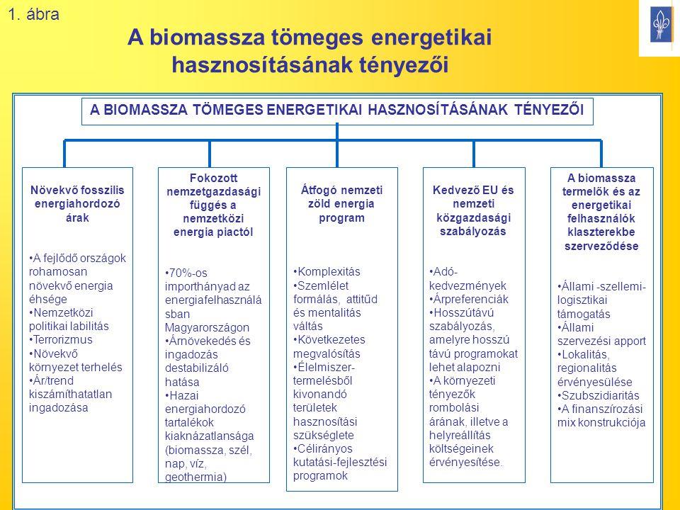 15 Növekvő fosszilis energiahordozó árak A fejlődő országok rohamosan növekvő energia éhsége Nemzetközi politikai labilitás Terrorizmus Növekvő környezet terhelés Ár/trend kiszámíthatatlan ingadozása Fokozott nemzetgazdasági függés a nemzetközi energia piactól 70%-os importhányad az energiafelhasználá sban Magyarországon Árnövekedés és ingadozás destabilizáló hatása Hazai energiahordozó tartalékok kiaknázatlansága (biomassza, szél, nap, víz, geothermia) Átfogó nemzeti zöld energia program Komplexitás Szemlélet formálás, attitűd és mentalitás váltás Következetes megvalósítás Élelmiszer- termelésből kivonandó területek hasznosítási szükséglete Célirányos kutatási-fejlesztési programok Kedvező EU és nemzeti közgazdasági szabályozás Adó- kedvezmények Árpreferenciák Hosszútávú szabályozás, amelyre hosszú távú programokat lehet alapozni A környezeti tényezők rombolási árának, illetve a helyreállítás költségeinek érvényesítése.