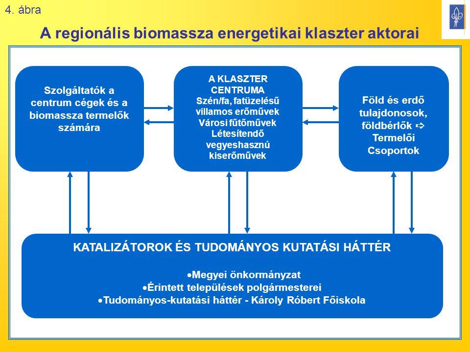 18 Szolgáltatók a centrum cégek és a biomassza termelők számára A KLASZTER CENTRUMA Szén/fa, fatüzelésű villamos erőművek Városi fűtőművek Létesítendő vegyeshasznú kiserőművek Föld és erdő tulajdonosok, földbérlők  Termelői Csoportok KATALIZÁTOROK ÉS TUDOMÁNYOS KUTATÁSI HÁTTÉR  Megyei önkormányzat  Érintett települések polgármesterei  Tudományos-kutatási háttér - Károly Róbert Főiskola A regionális biomassza energetikai klaszter aktorai 4.