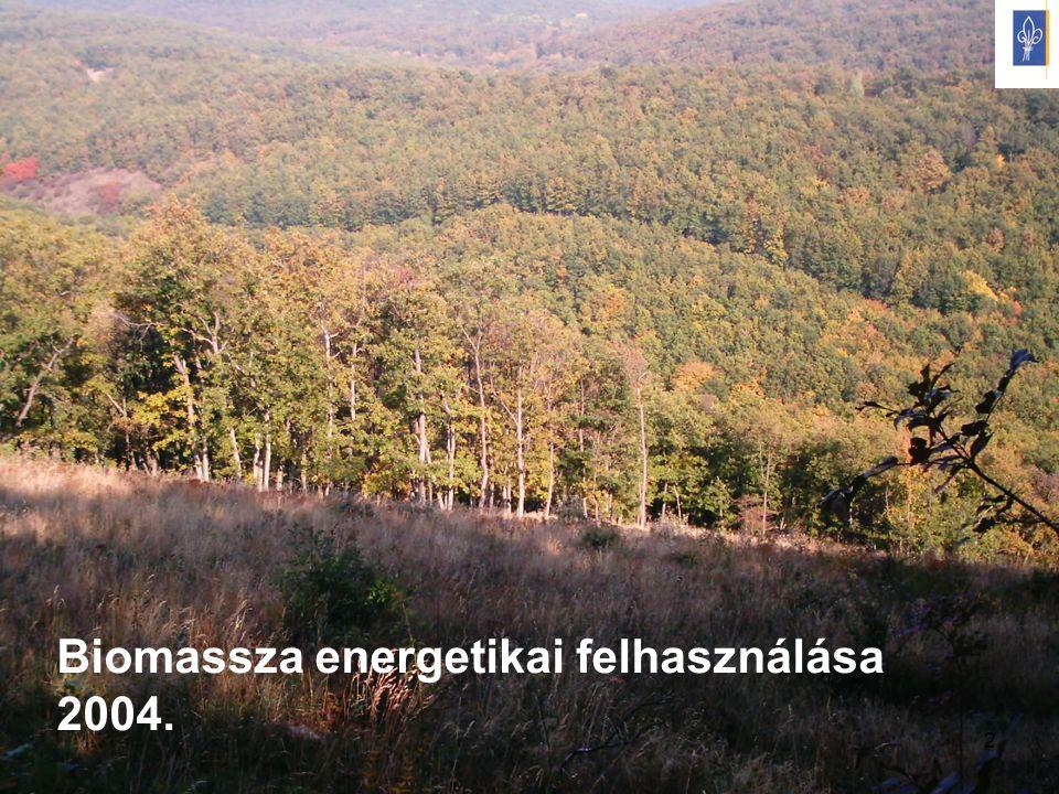 2 Biomassza energetikai felhasználása 2004.